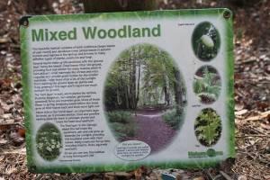 Nature Trail Lees Wood